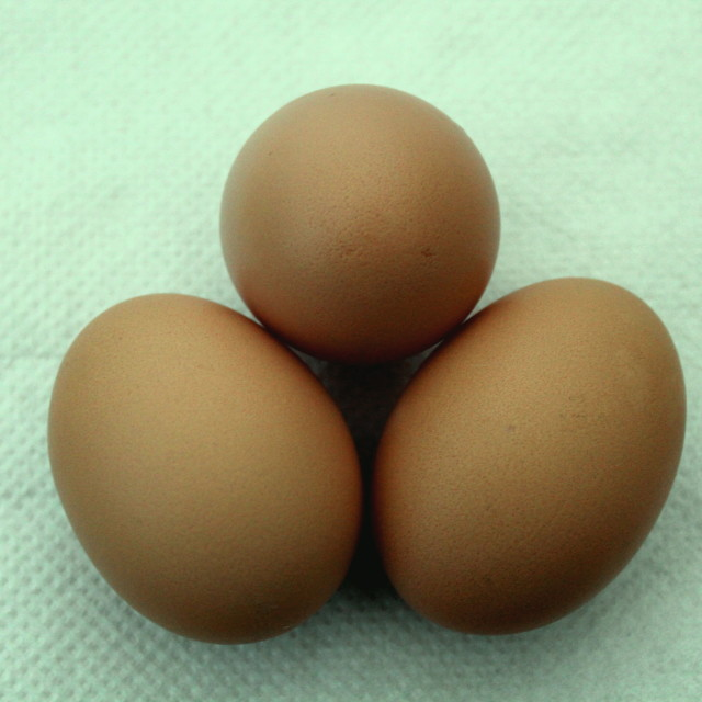"""Another 3 Eggs"" stock image"