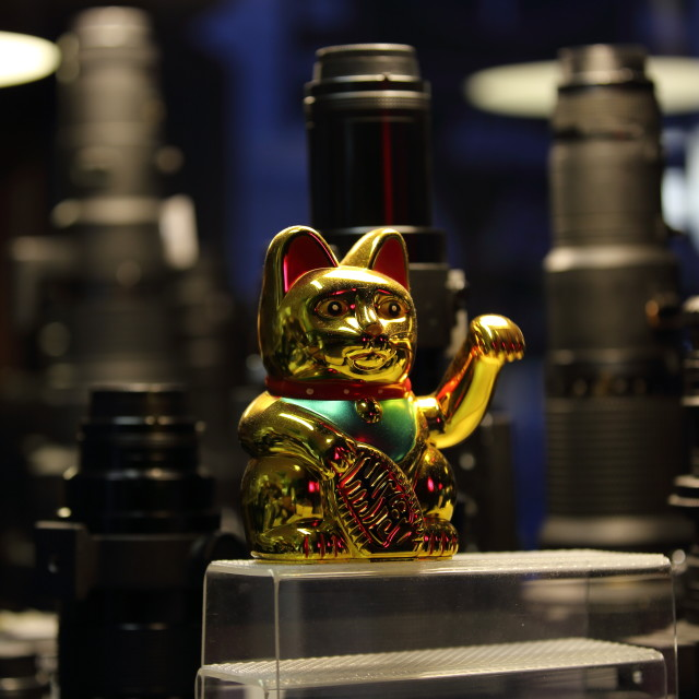 """""""Lucky Cat"""" stock image"""