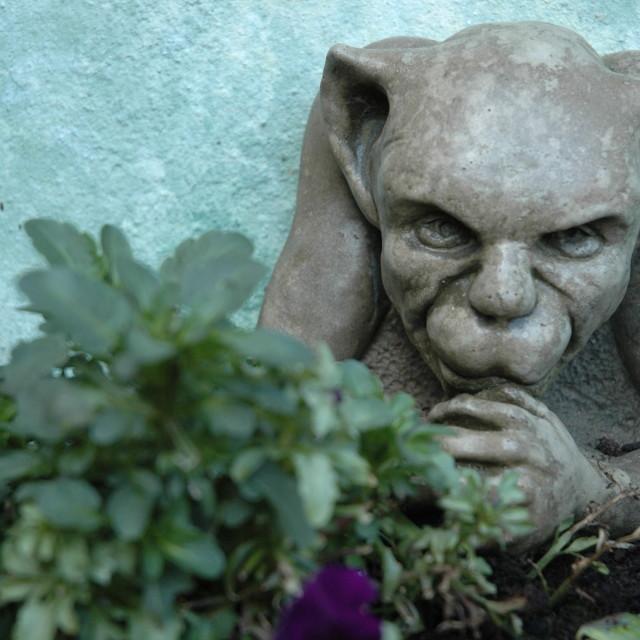 """""""Garden Goblin"""" stock image"""