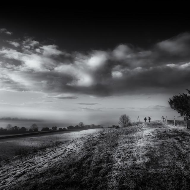 """""""Dawn Walk"""" stock image"""