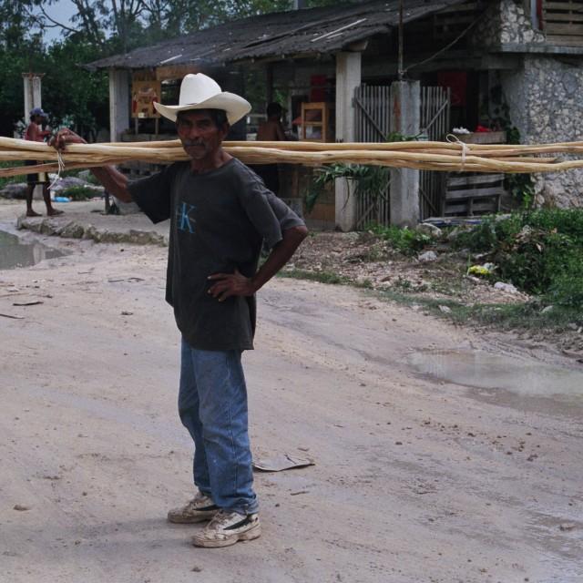"""Bone Fil, Mexico"" stock image"