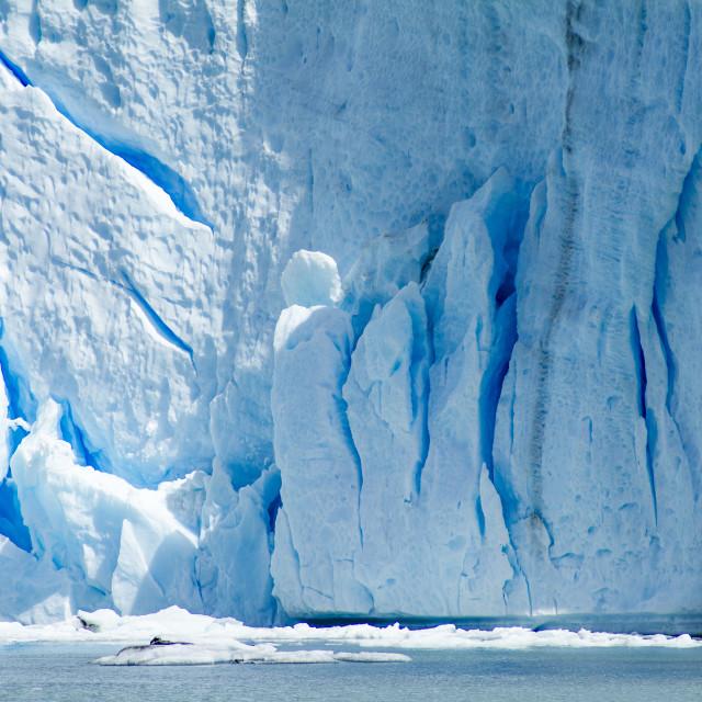 """""""Patagonian Ice"""" stock image"""
