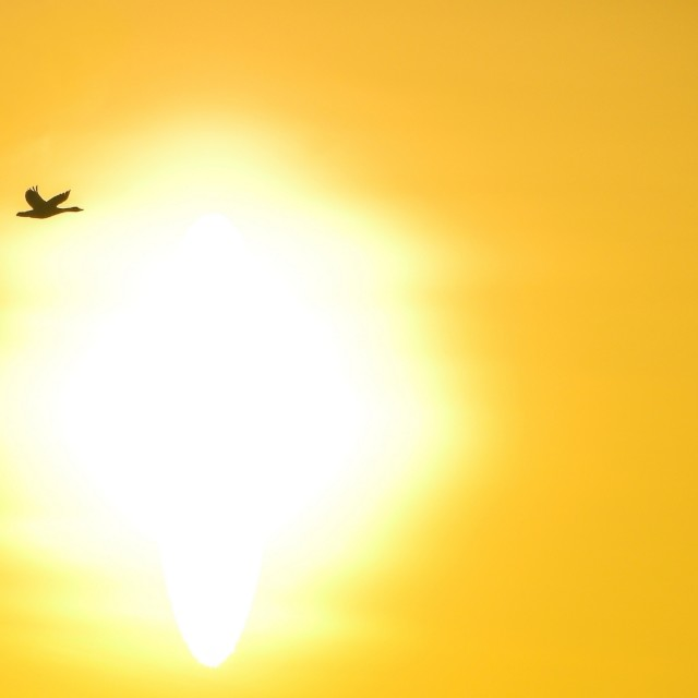 """""""Into the sun"""" stock image"""