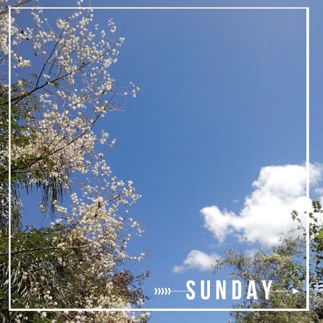 """""""Sunday"""" stock image"""