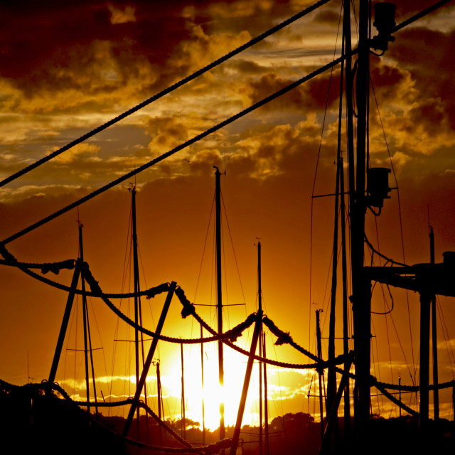 """""""sun on the ropes"""" stock image"""