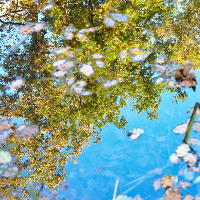 """Blue sky reflection"" stock image"