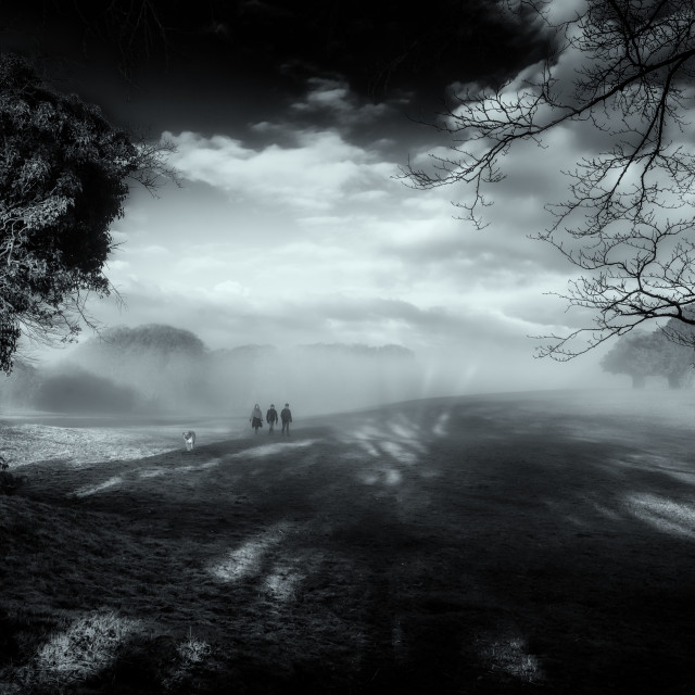 """""""Dog Walkers In The Mist"""" stock image"""