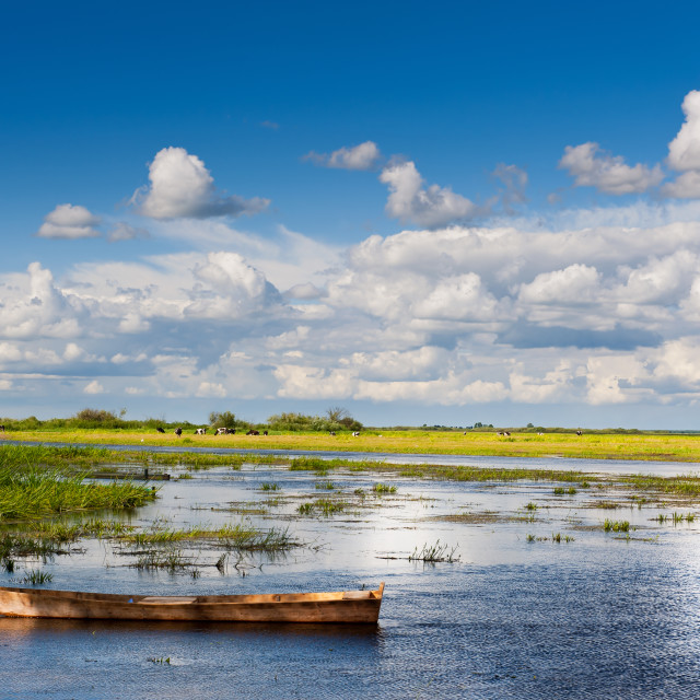 """""""Old wooden boat in Biebrza wetland"""" stock image"""