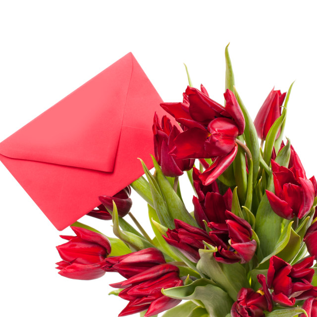 """""""tulips bouquet with red envelope gift"""" stock image"""