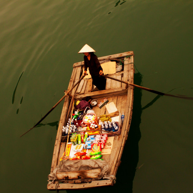 """Halong Bay Local"" stock image"
