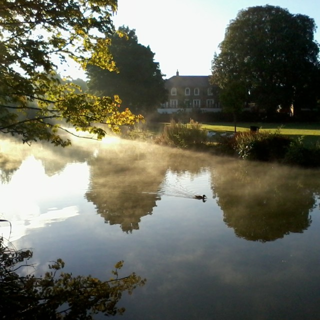 """Morning stroll"" stock image"