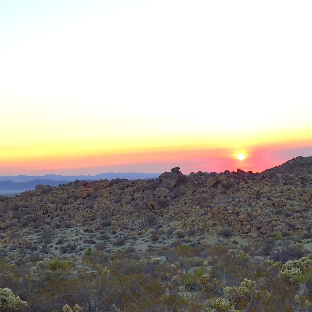 """""""Colorful desert sunrise vertical"""" stock image"""