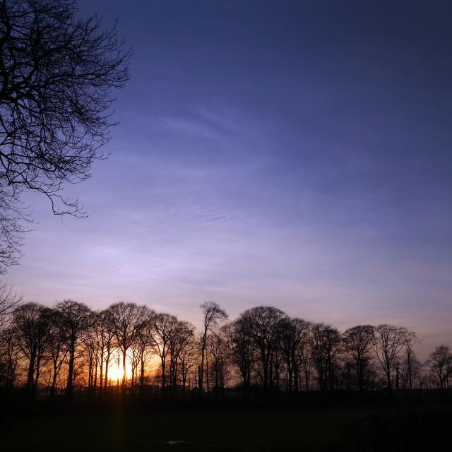 """Winter Sunset"" stock image"