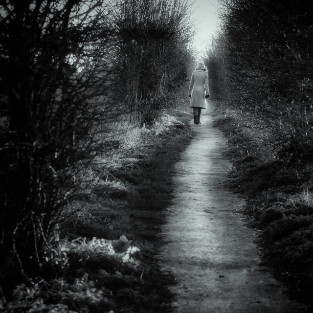 """Lonely Path"" stock image"