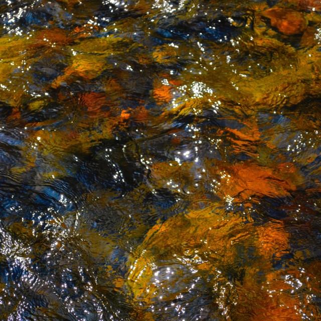 """Autumn water tones"" stock image"