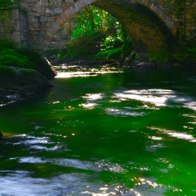 """Green river"" stock image"
