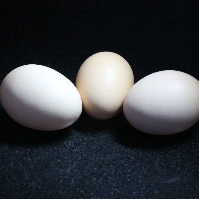 """3 Free Range Eggs"" stock image"