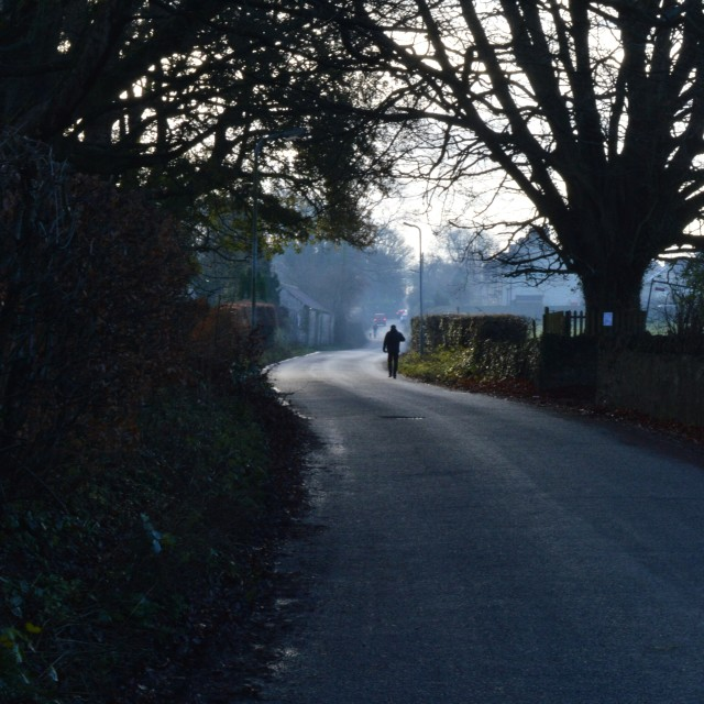 """The Lane"" stock image"