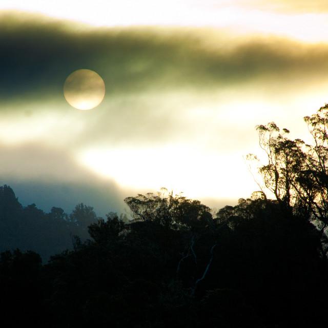 """""""Westcoast sunset"""" stock image"""