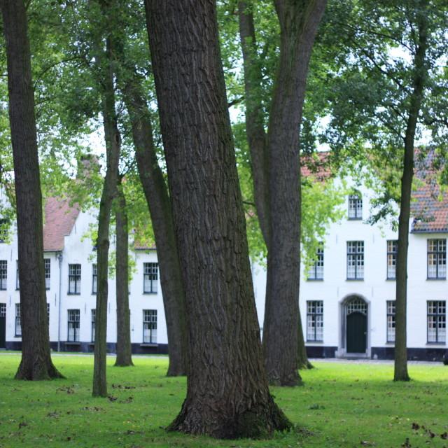 """""""Beguine Convent, Bruges"""" stock image"""