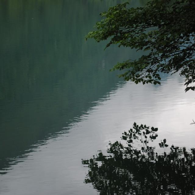 """Green lake reflection"" stock image"