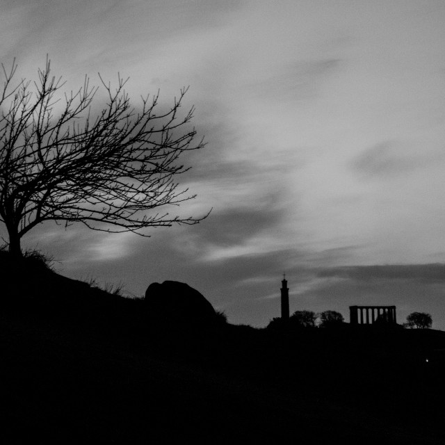 """Edinburgh - city skyline silhouette with tree and Calton Hill"" stock image"