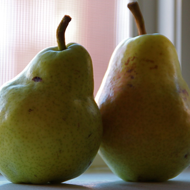 """""""Pears"""" stock image"""