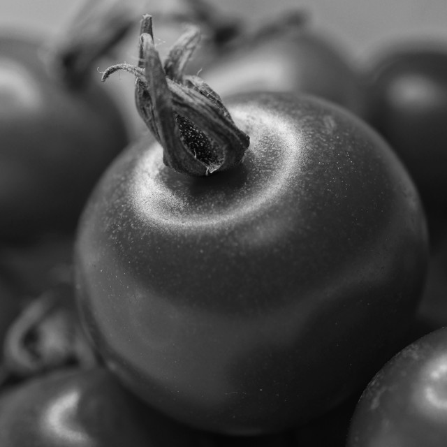 """Black & White Tomatoes"" stock image"