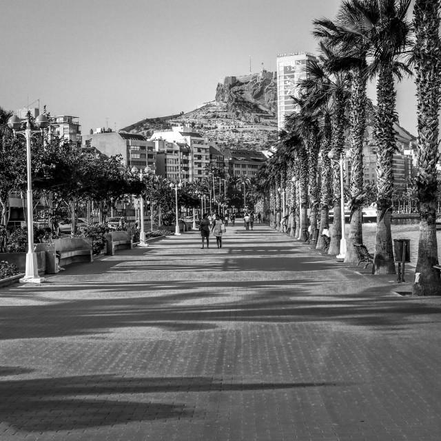 """Alicante Harbour"" stock image"
