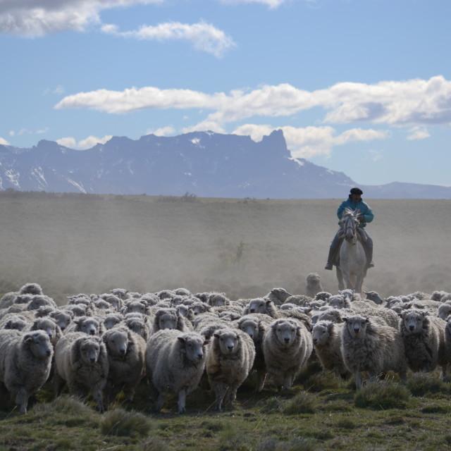 """Patagonia, Chile"" stock image"