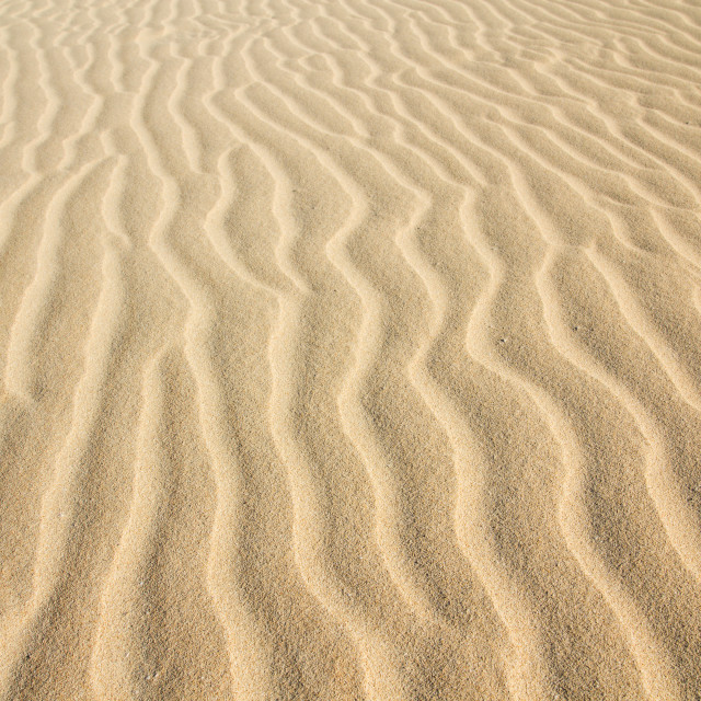 """Desert Sand Pattern Texture"" stock image"