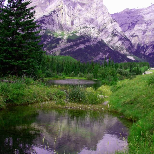"""""""Mount Kidd near Banff - Canada"""" stock image"""