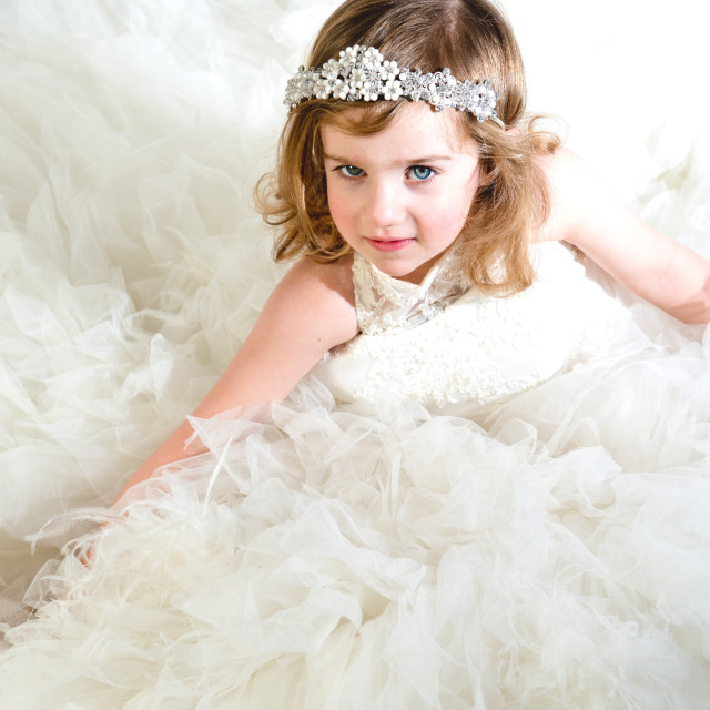 """""""The Princess and the Dream Dress"""" stock image"""
