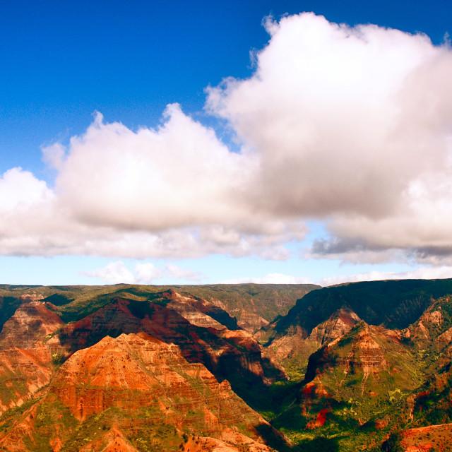 """""""Waimea Canyon"""" stock image"""