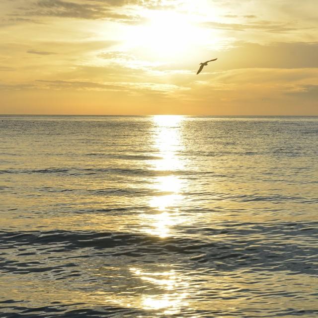 """Gulf of Mexico sunset at Lido Key, Sarasota Florida"" stock image"