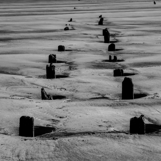 """""""All that Remains (mono)"""" stock image"""