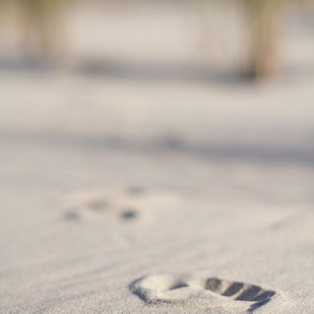 """""""Foot print"""" stock image"""