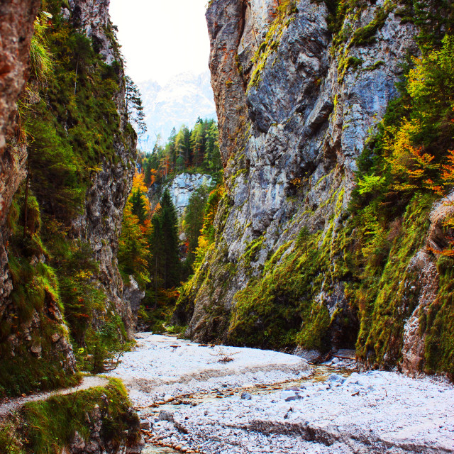 """""""Maturljek Gorge"""" stock image"""