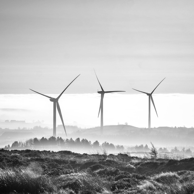"""Windmills in the Mist"" stock image"