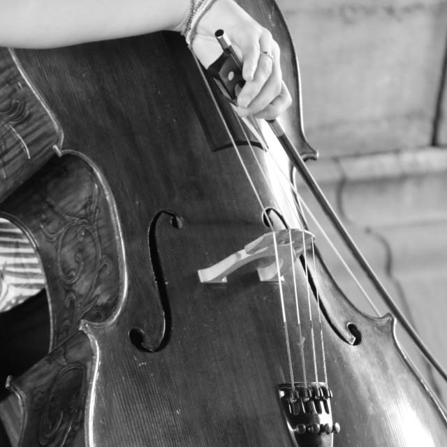 """Ghent Cellist II"" stock image"
