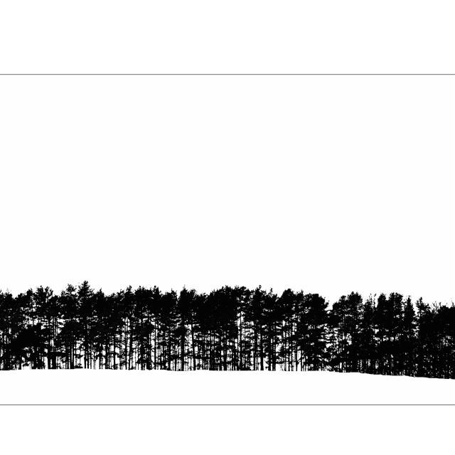 """""""Tree line"""" stock image"""