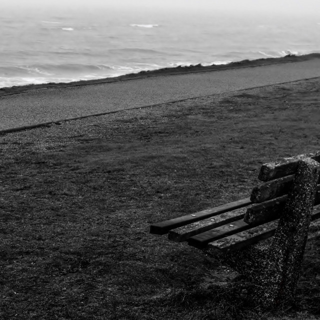 """Empty Bench"" stock image"