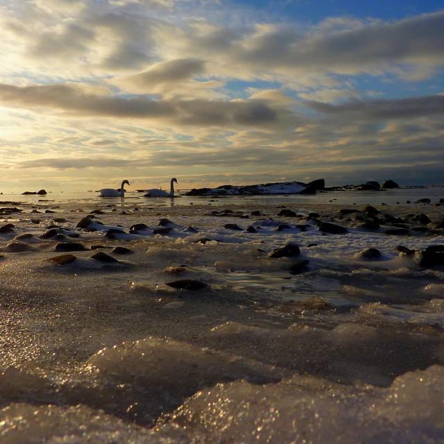 """Ardrossan shoreline"" stock image"