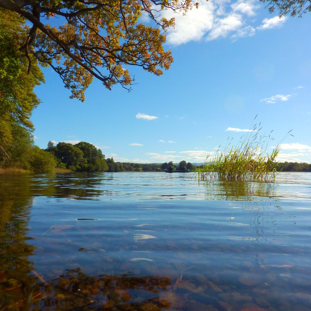 """""""Lake of Menteith serenity"""" stock image"""