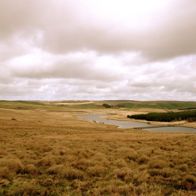 """""""Llyn Alwen - reservoir"""" stock image"""
