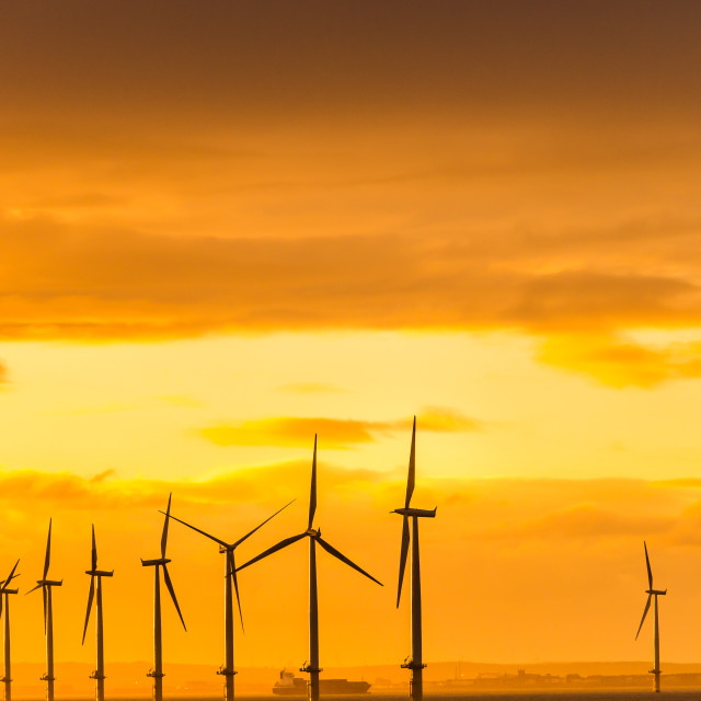 """Windfarm Sunset"" stock image"