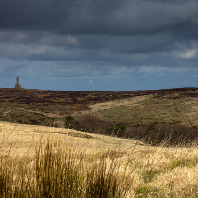 """Darwen Tower"" stock image"