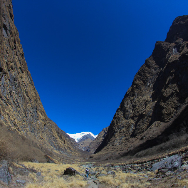 """""""A lone trekker in a big valley"""" stock image"""