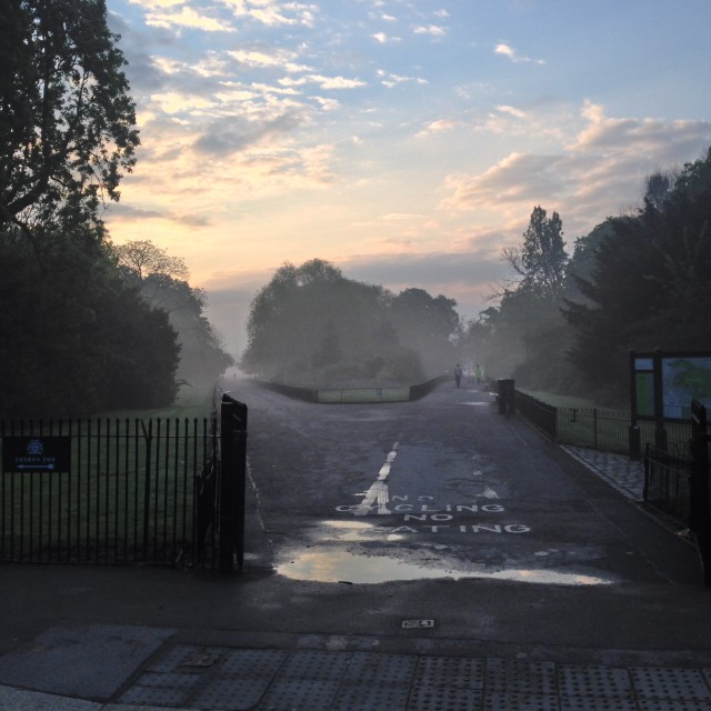 """Regent's Park, early morning"" stock image"