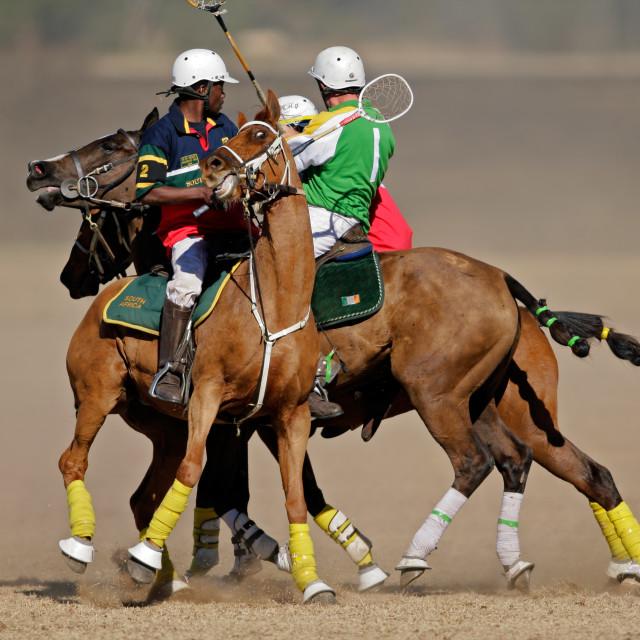 """International polocrosse"" stock image"